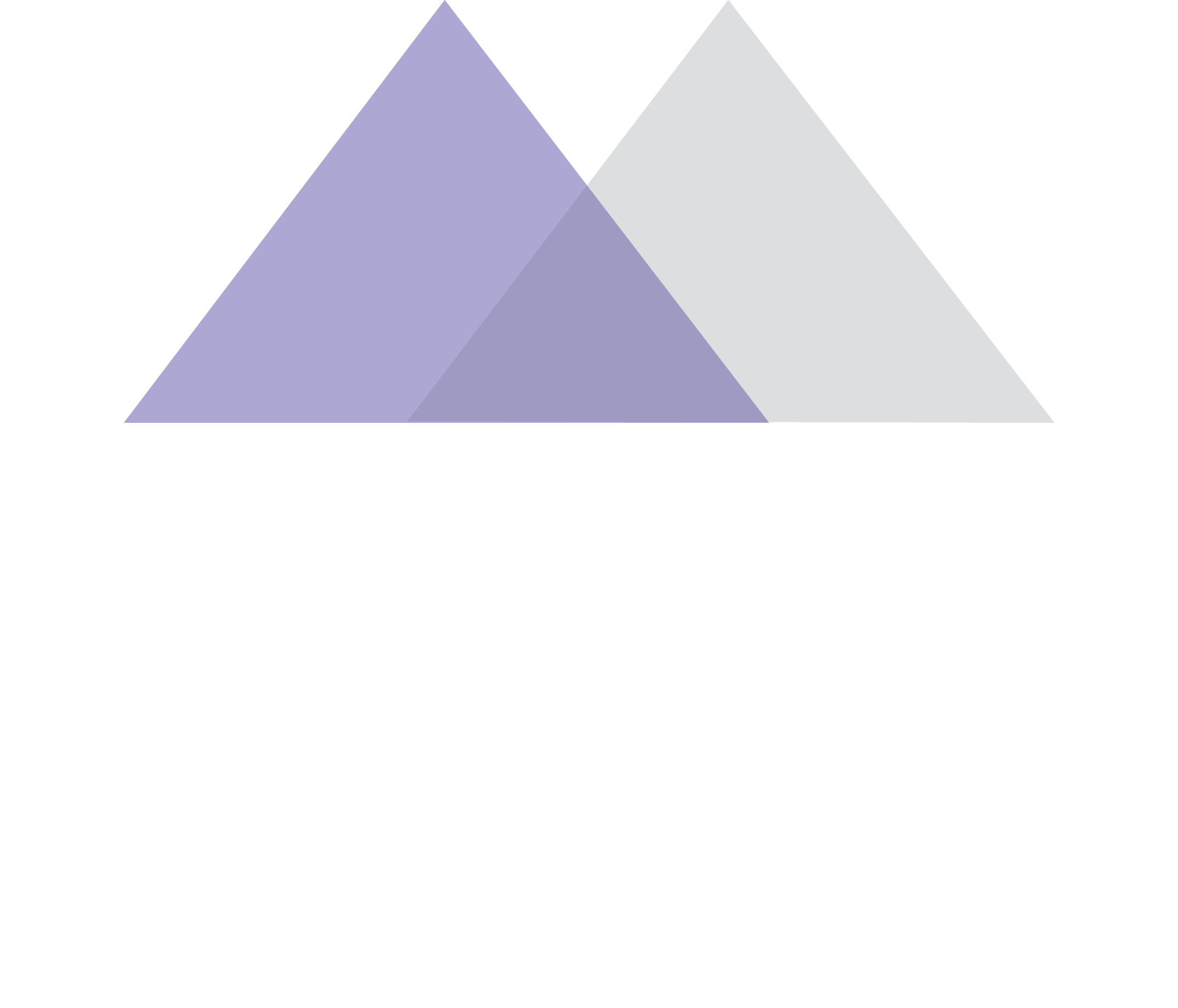 MFV Makler-Service